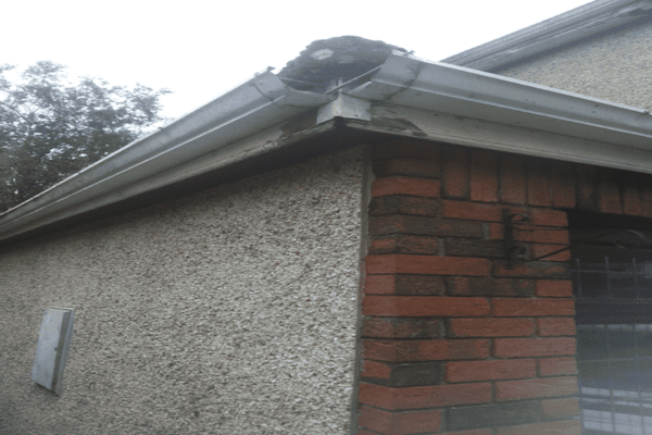 Fascia Board Gutter Replacement in birmingham